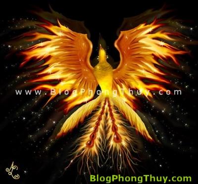Phượng Hoàng - Chim Phụng Phong Thủy