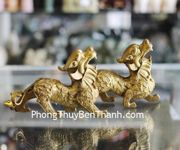 d277-ty-huu-dong-lung-dat-vang-2